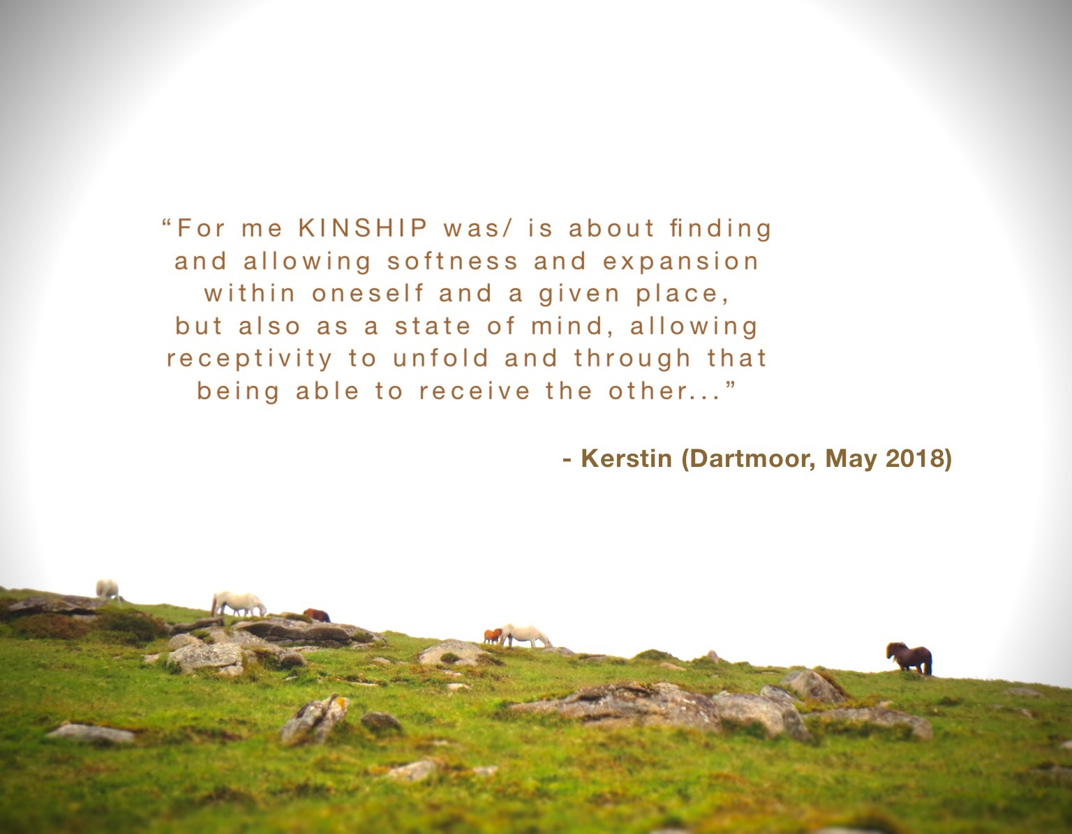 Participant Kerstin's thoughts on Kinship Workshop