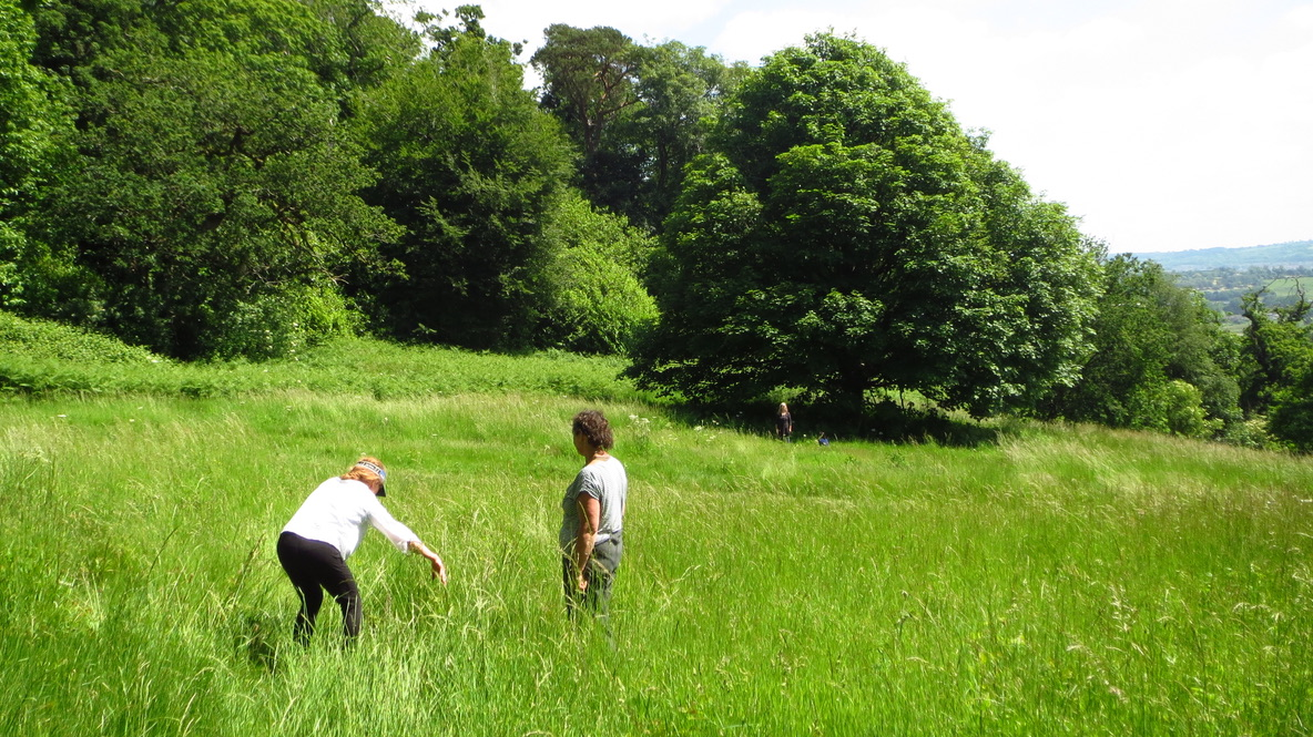 2 people exploring the long grass