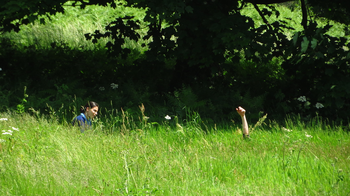 two people in the long grass