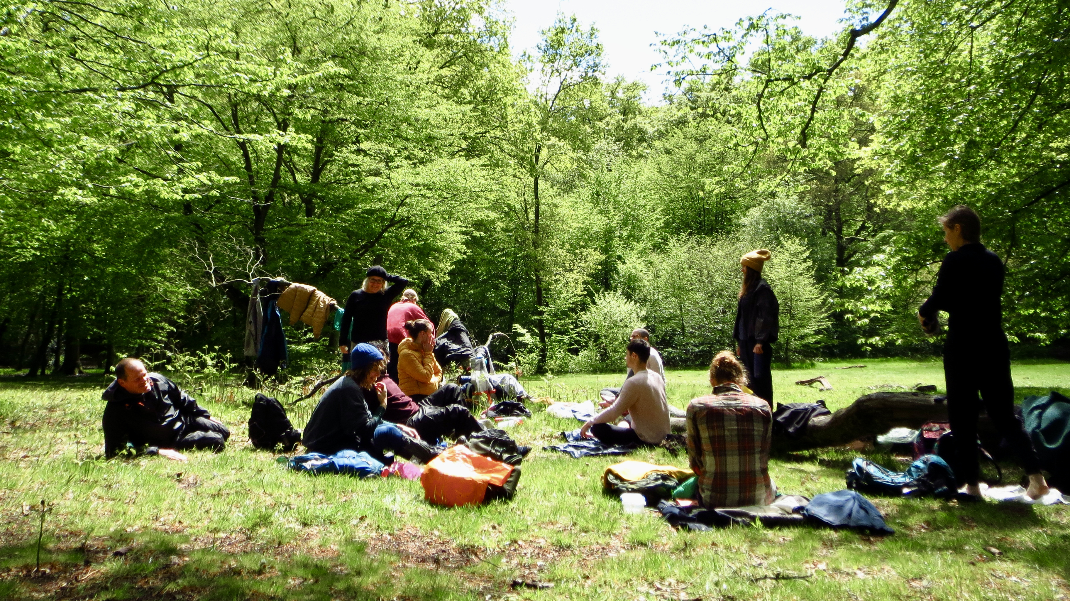 group reflections in a glade